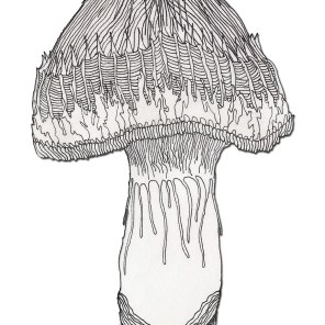 Mushroom (2003) SOLD
