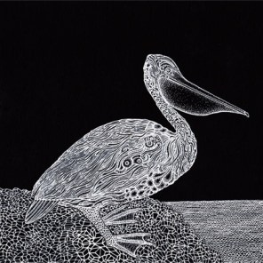 The Pelican (2015) SOLD