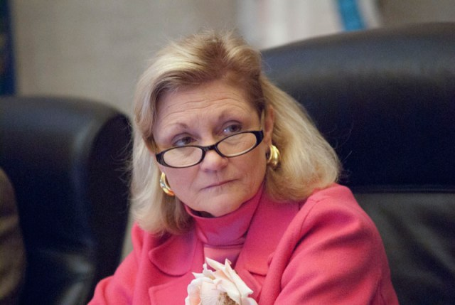 Ward 6 Councilwoan Meg Salyer's seat is up for re-election in March, 2015. (Mark Hancock)