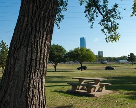 Wheeler Park big trees n Table_0089mh