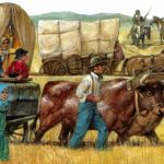 Covered wagons SP