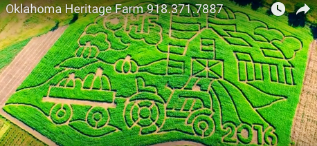 Fall Festival Coming Soon to Oklahoma Heritage Farm — The Maze is Ready!