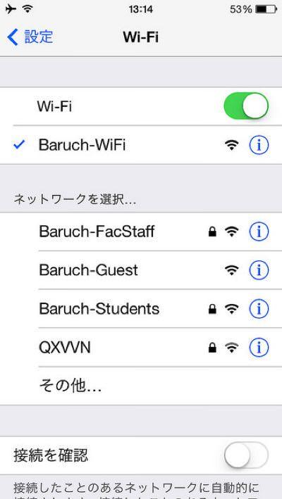 ニューヨーク Baruch College (バルーク・カレッジ) バルーク大学