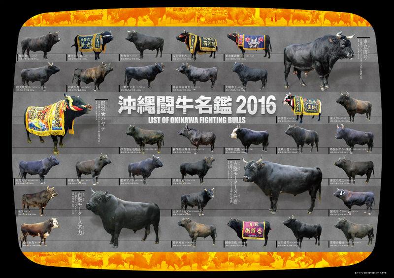 沖縄闘牛名鑑2016ポスター