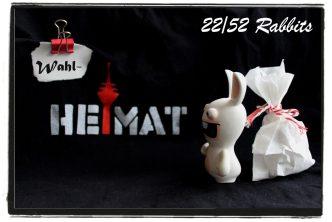 rabbit22