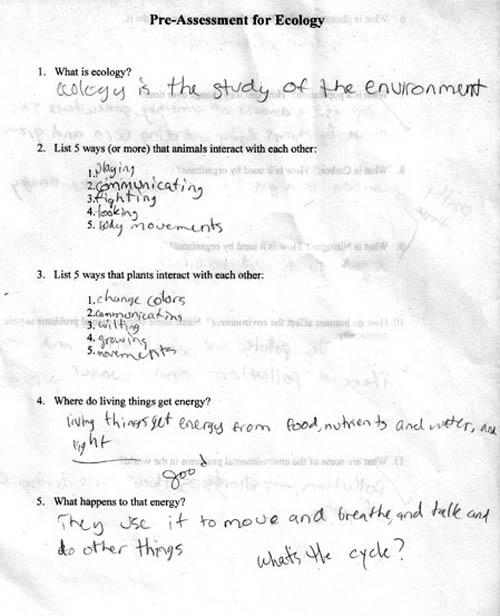 essays on exams