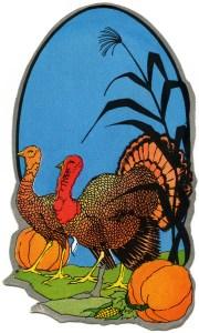 free thanksgiving clipart, free vintage image, turkey graphic, antique digital thanksgiving illustration, turkey pumpkin clip art