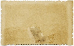 victorian calling card back, cardboard tag, shabby tag, grunge paper graphic
