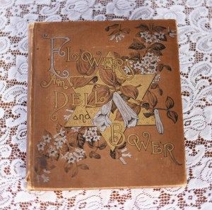 flowers from dell and bower, 1886 book, susie barstow skelding, poems illustrated