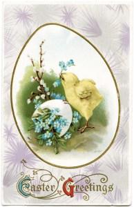 antique postcard, easter chick and egg, old easter card, vintage easter post card