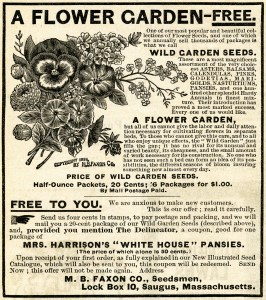 vintage magazine ad, flower seeds advertisement, vintage garden clip art, black and white flowers clipart, free flower garden graphics