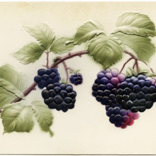 Free Vintage Image ~ Berries and Leaves Postcard