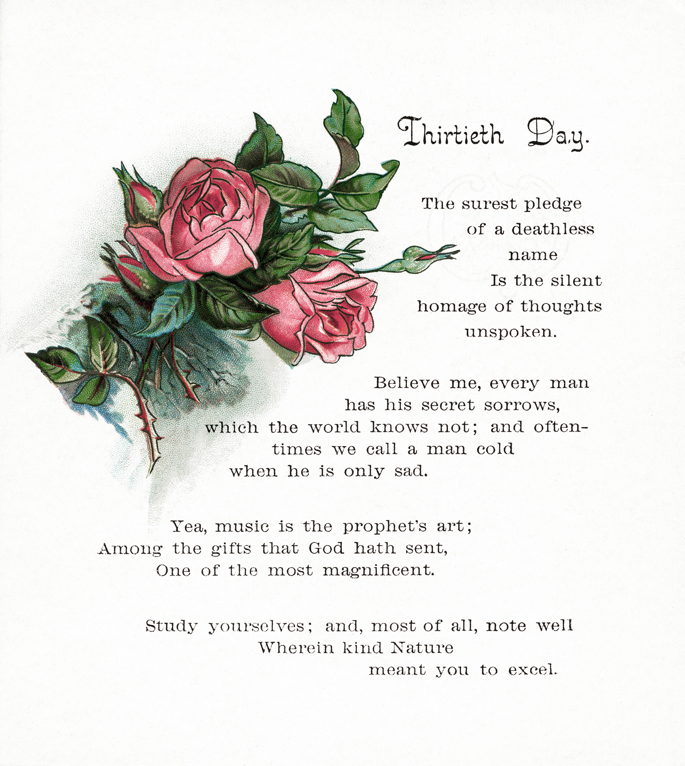 Free Vintage Image Thirtieth Day Poem And Pink Roses Old