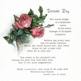 Free Vintage Image ~ Pink Roses and Thirtieth Day Poem