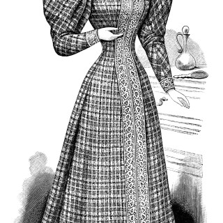 Free Vintage Image ~ Victorian Ladies' Princess House Dress