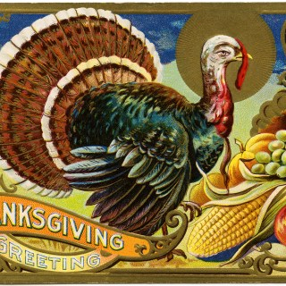 Free Vintage Image ~ Thanksgiving Greetings Turkey Postcard