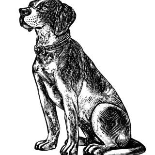 Free Vintage Image ~ Dog Clip Art