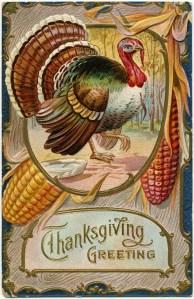 old Thanksgiving postcard, antique thanksgiving card, vintage turkey clip art, printable turkey image