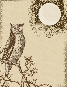 owl stationery, lilac and lavender