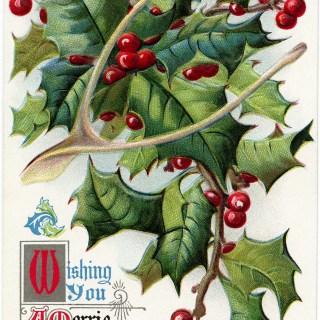 Merrie Christmas Vintage Postcard