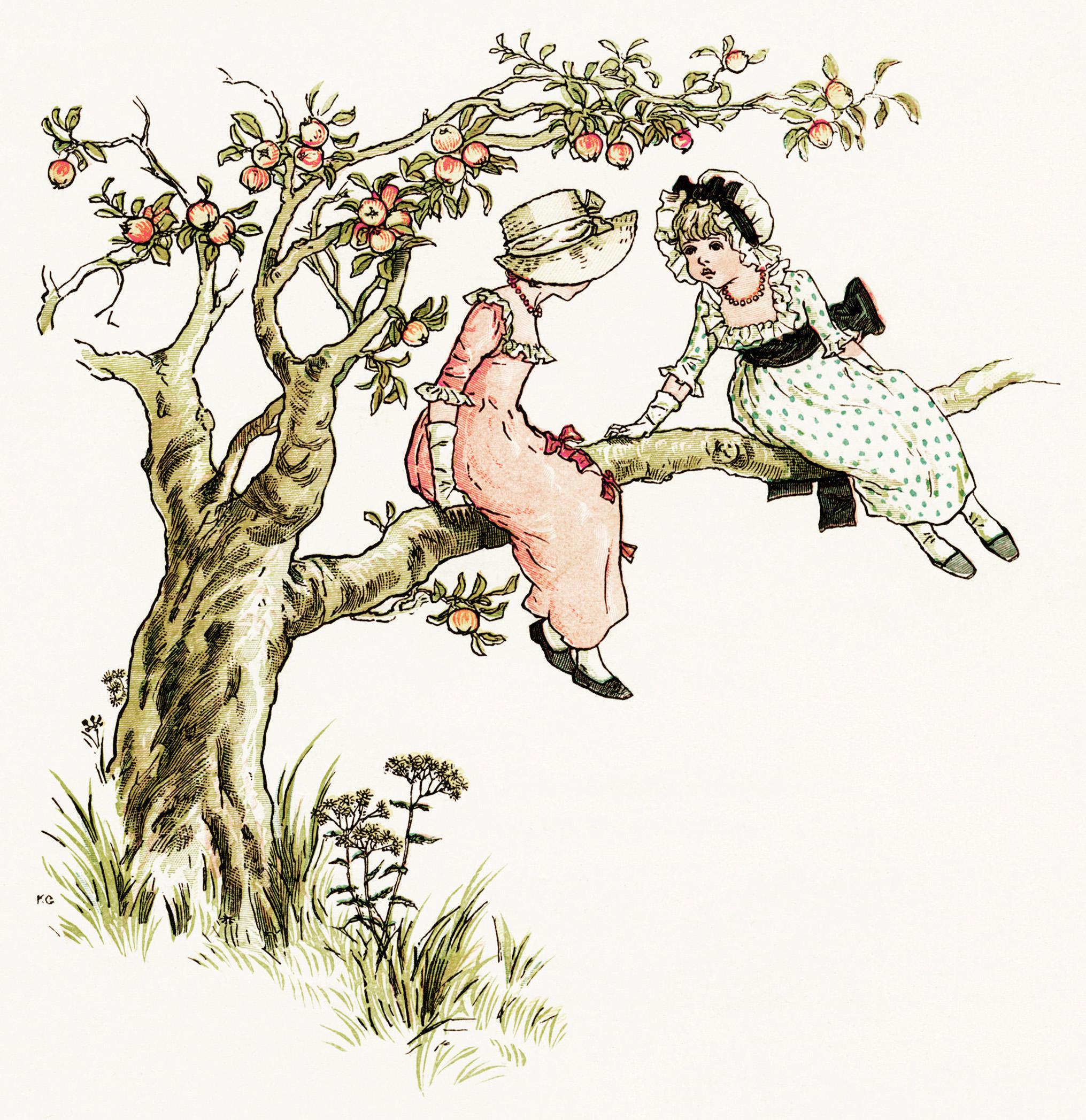 kate greenaway in apple tree