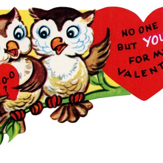 Valentine Owls on a Branch ~ Free Vintage Clip Art