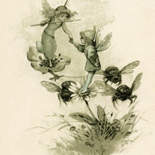 Fairies Flowers and Bees ~ Vintage Storybook Image