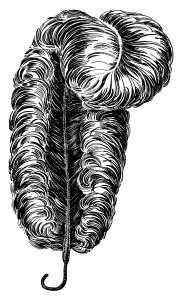 vintage catalog ad, black and white clip art, ostrich plume clipart, ostrich feather illustration, vintage ephemera free