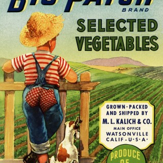 Vintage Vegetable Crate Label ~ Free Image