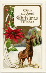 Victorian Christmas postcard, vintage christmas clip art, old fashioned Christmas card, deer in snowy field illustration, deer poinsettia Christmas postcard