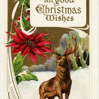 Deer in Snowy Field ~ Vintage Christmas Image