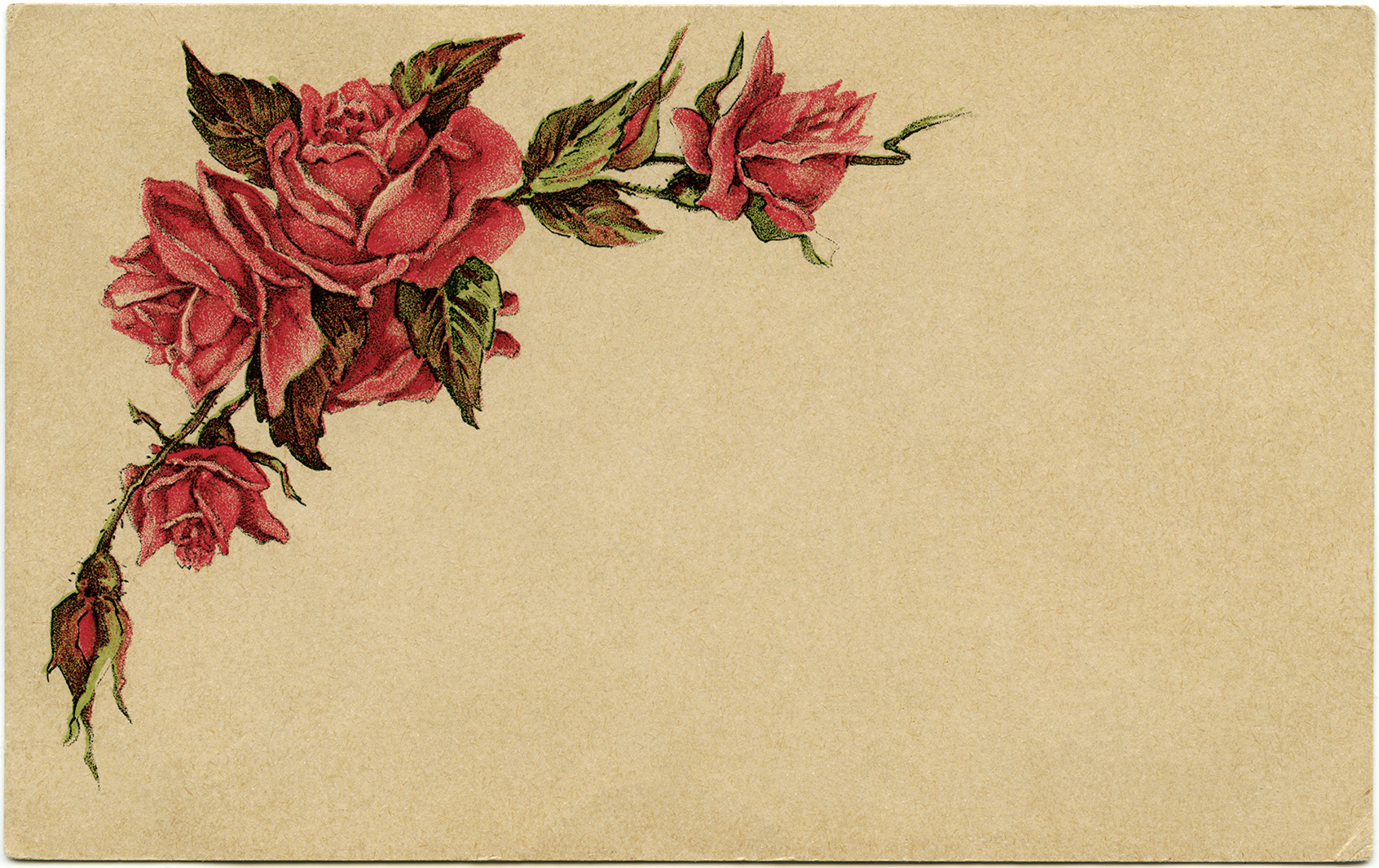 red roses easter postcard