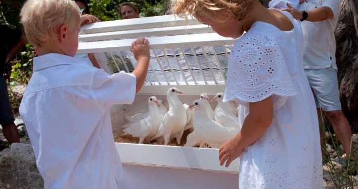 celebration-dove-release-blanco-river