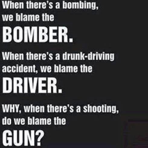 blame gun
