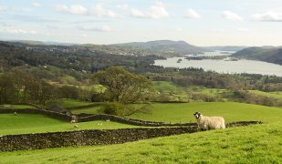 Telegraph guide - The Lake District windermere