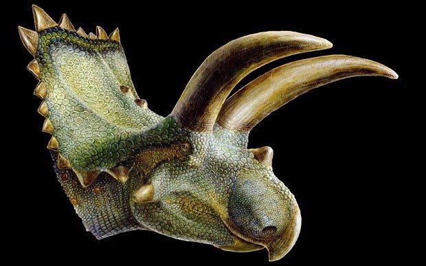 Nasatoceratops