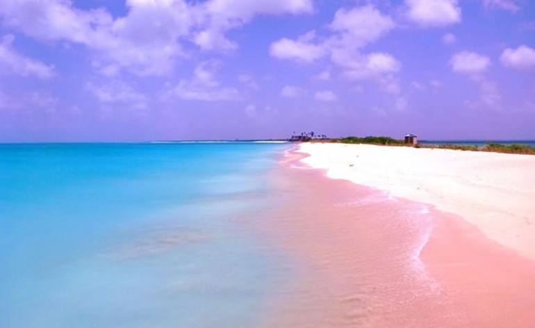 Pink-Sands-Beach-Harbour-Island-Bahamas