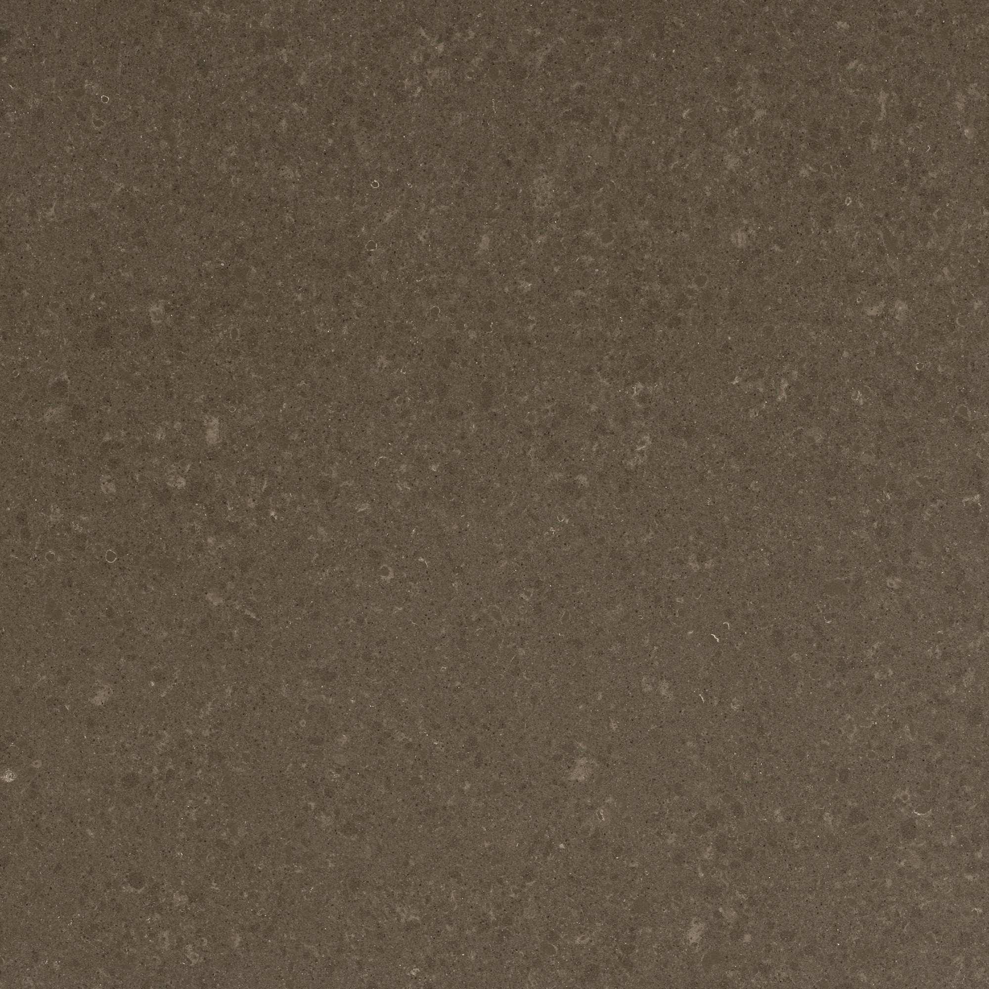 Caesarstone Countertop Thickness Wild Rice 4360 Omicron Granite And Tile