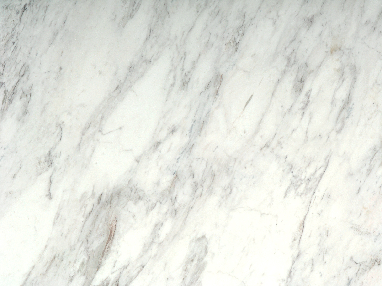 White And Grey Marble Callacatta Supreme Honed Omicron Granite And Tile