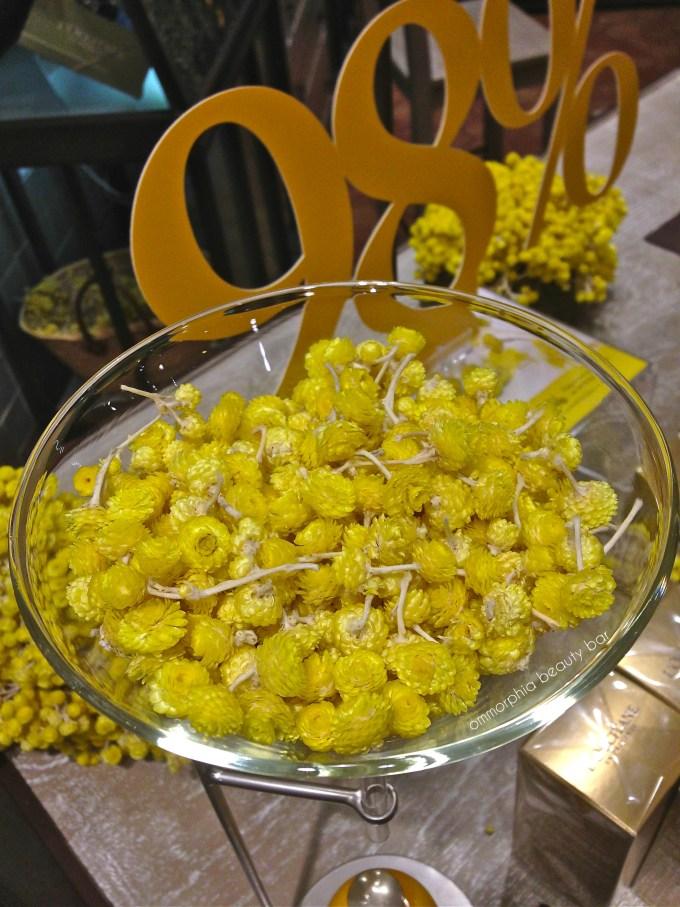 L'Occitane event immortelle flowers
