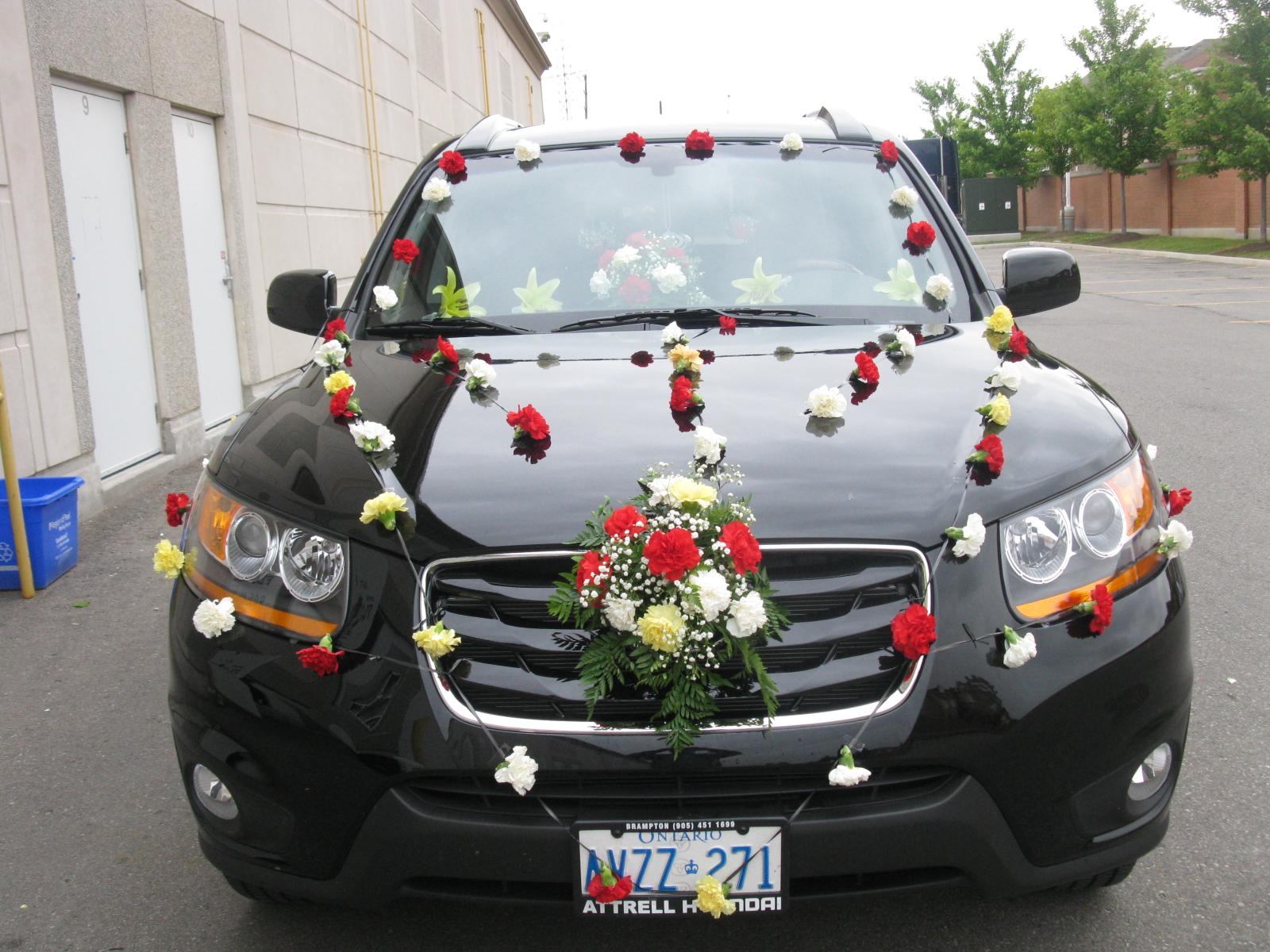Car Decoration Weding Wedding Car Decoration In Brampton Mississauga And Toronto Omni