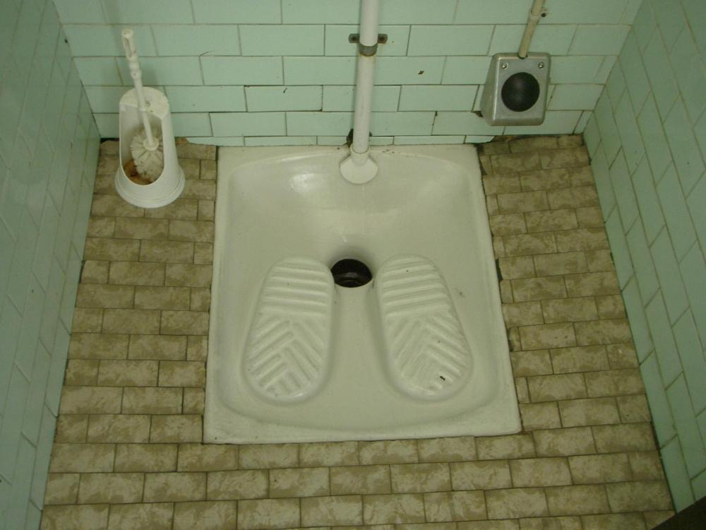 Understanding Italian Culture |  Toilet Basics (1/2)