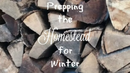 prepping the homestead for winter