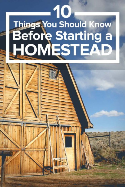 Starting-a-Homestead