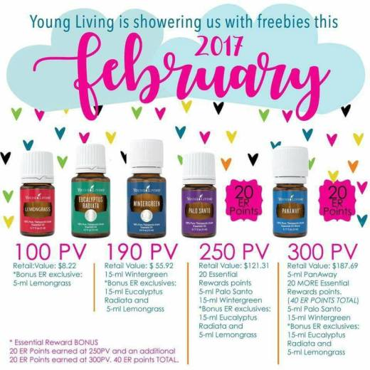 February 2017 PV Promotion