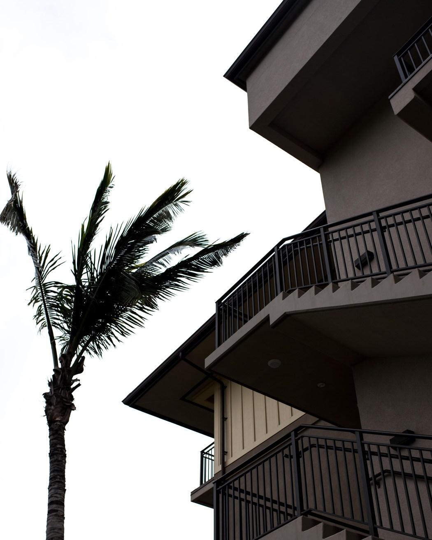hawaii161205_343
