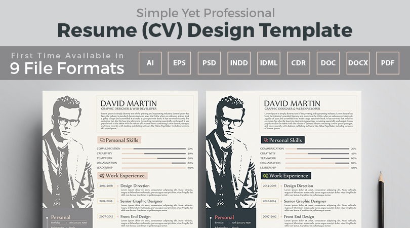 Simple Yet Frofessional Resume-CV Design Templates - professional resume design templates