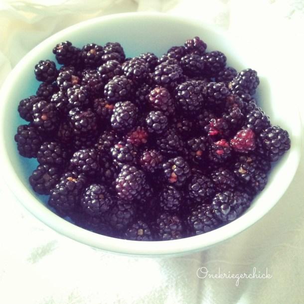freshly picked wild blackberries {Onekriegerchick.com}