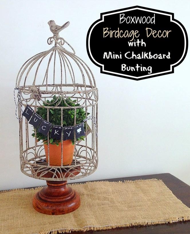 boxwood birdcage