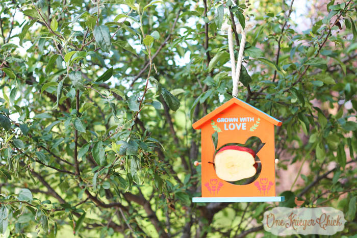 Fruit Slice Bird Feeder- Fun Summer crafting with kids with We Made It- OneKriegerChick.com 13-1